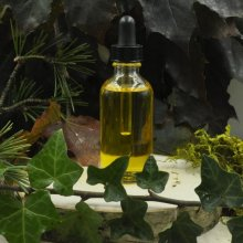 Tea Maiden Hair & Body Oil
